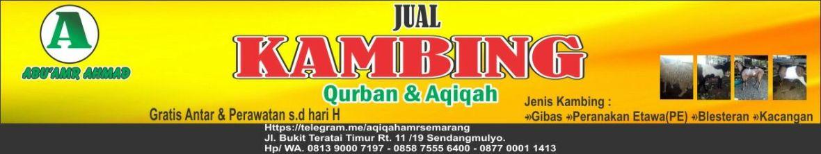 aqiqah semarang, aqiqah kota semarang , aqiqah semarang jawa tengah indonesia, aqiqah di semarang, jasa aqiqah di semarang, aqiqah semarang 2018, aqiqah murah di semarang