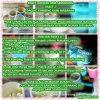 PAKET 2 daging Kambing Siap di Masakan, masakan kambing untuk aqiqah, masakan kambing aqiqah, masakan kambing akikah, masakan kambing gule, tengkleng dan empal bistik untuk aqiqah semarang, biaya masak kambing aqiqah semarang, ongkos masak daging kambing aqiqah semarang, jasa layanan aqiqah semarang, alamat aqiqah semarang, harga paket aqiqah semarang 2020