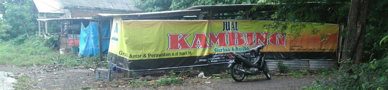 Aqiqah AMR Semarang I Abu Amr Ahmad I 0858-7555-6400