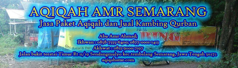 Aqiqah Semarang, Akikah Semarang, Aqiqoh Semarang- Aqiqah Amr Semarang; 0858-7555-6400; Abu Amr Ahmad